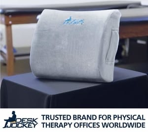 Desk Jockey Lower Back Pain Support Cushion