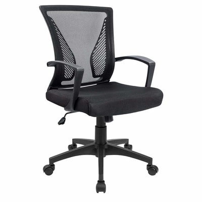 Strange 6 Best Ergonomic Office Chairs With Back Support To Prevent Evergreenethics Interior Chair Design Evergreenethicsorg